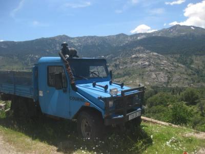 11paivaharoauto