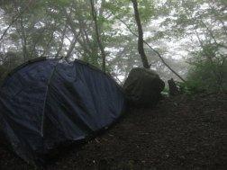 teltturu