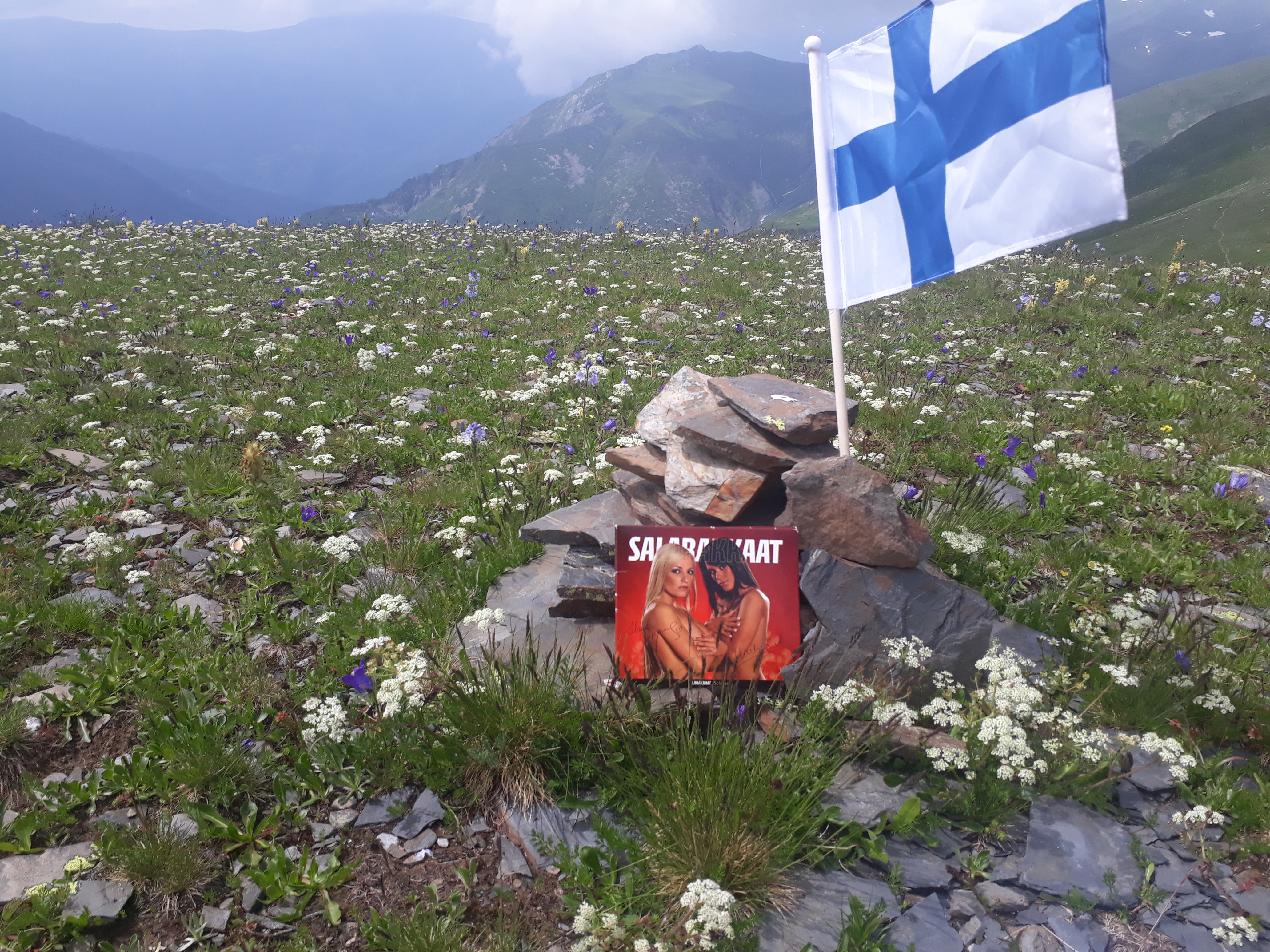 Surströmming Suomesta